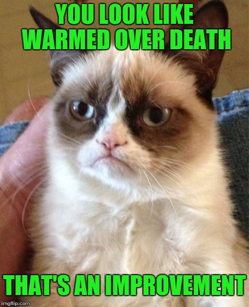 Grumpy Cat Meme | YOU LOOK LIKE WARMED OVER DEATH THAT'S AN IMPROVEMENT | image tagged in memes,grumpy cat | made w/ Imgflip meme maker