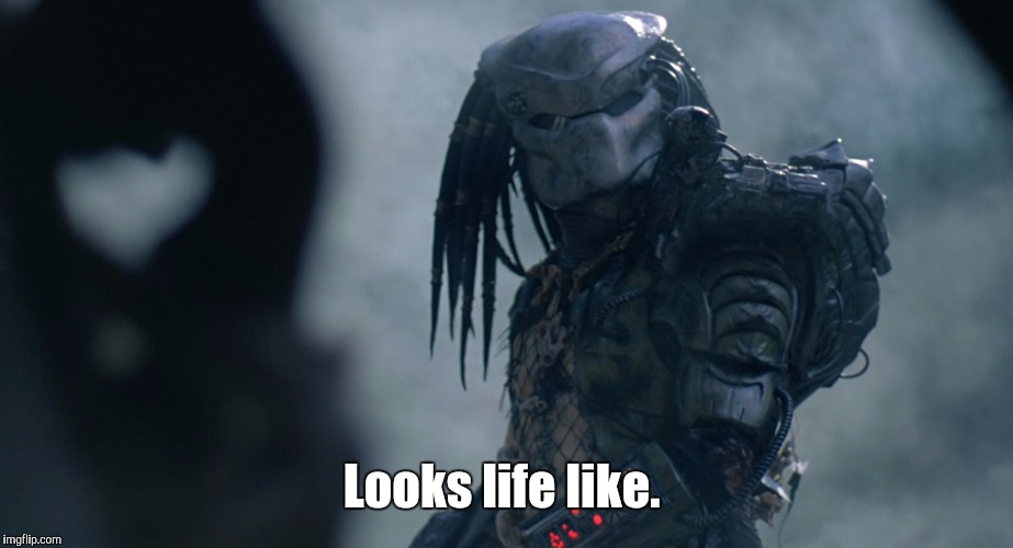 Predator | Looks life like. | image tagged in predator | made w/ Imgflip meme maker
