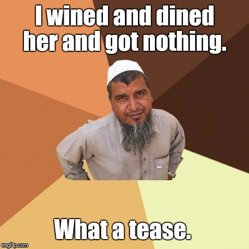1awhcf.jpg | I wined and dined her and got nothing. What a tease. | image tagged in 1awhcfjpg | made w/ Imgflip meme maker