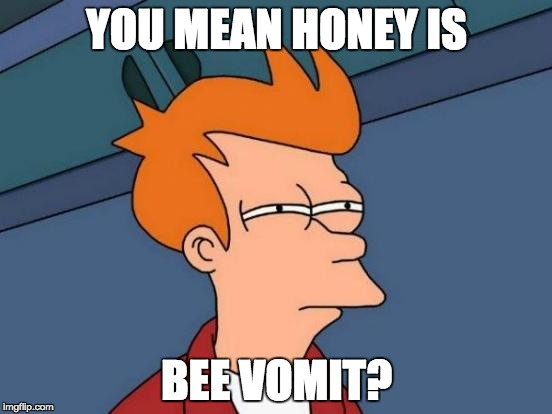 Futurama Fry Meme | YOU MEAN HONEY IS BEE VOMIT? | image tagged in memes,futurama fry | made w/ Imgflip meme maker