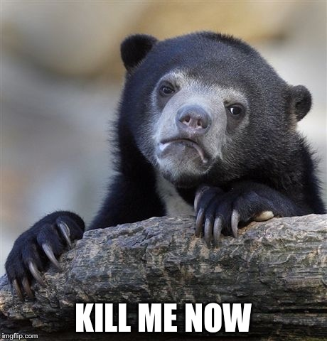 Confession Bear Meme | KILL ME NOW | image tagged in memes,confession bear | made w/ Imgflip meme maker
