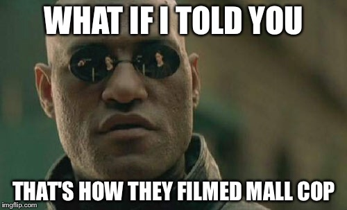 Matrix Morpheus Meme | WHAT IF I TOLD YOU THAT'S HOW THEY FILMED MALL COP | image tagged in memes,matrix morpheus | made w/ Imgflip meme maker