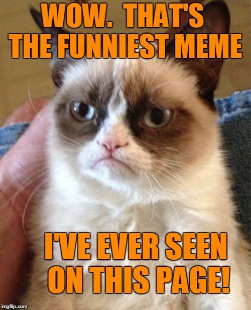 Grumpy Cat Meme | WOW.  THAT'S THE FUNNIEST MEME I'VE EVER SEEN ON THIS PAGE! | image tagged in memes,grumpy cat | made w/ Imgflip meme maker