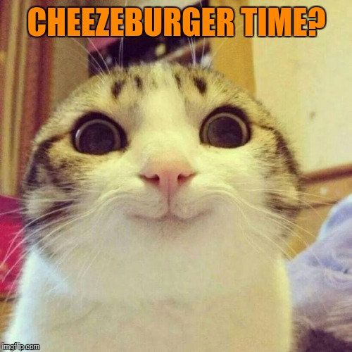 CHEEZEBURGER TIME? | made w/ Imgflip meme maker