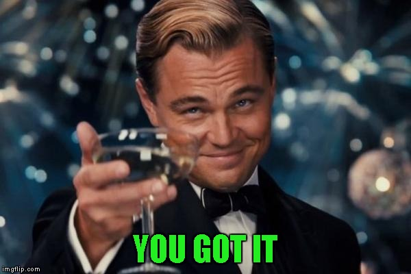 Leonardo Dicaprio Cheers Meme | YOU GOT IT | image tagged in memes,leonardo dicaprio cheers | made w/ Imgflip meme maker