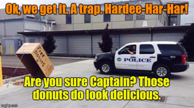 Cops do LOVE donuts | Ok, we get it. A trap. Hardee-Har-Har! Are you sure Captain? Those donuts do look delicious. | image tagged in donuts,cops and donuts | made w/ Imgflip meme maker