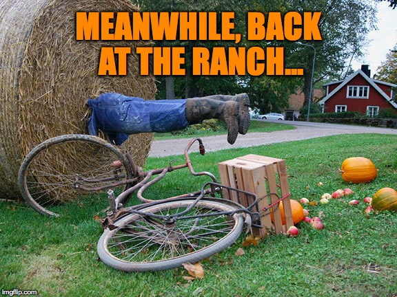 Man-Eater | MEANWHILE, BACK AT THE RANCH... | image tagged in back at the ranch | made w/ Imgflip meme maker