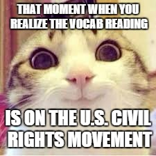 Happy civil rights cat | THAT MOMENT WHEN YOU REALIZE THE VOCAB READING IS ON THE U.S. CIVIL RIGHTS MOVEMENT | image tagged in happy cat,happy kitty,civil rights | made w/ Imgflip meme maker