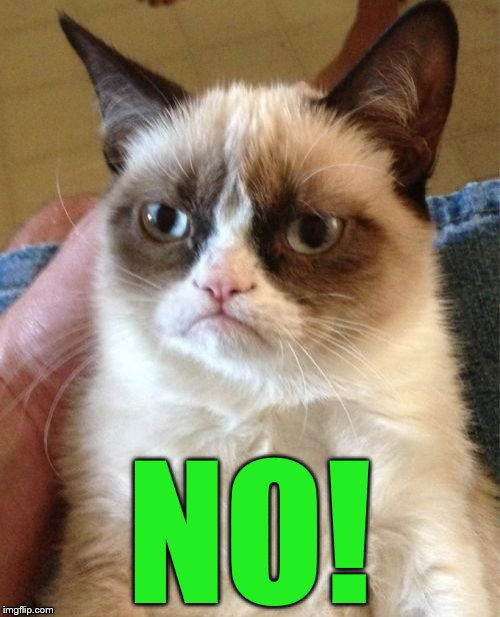 Grumpy Cat Meme | NO! | image tagged in memes,grumpy cat | made w/ Imgflip meme maker