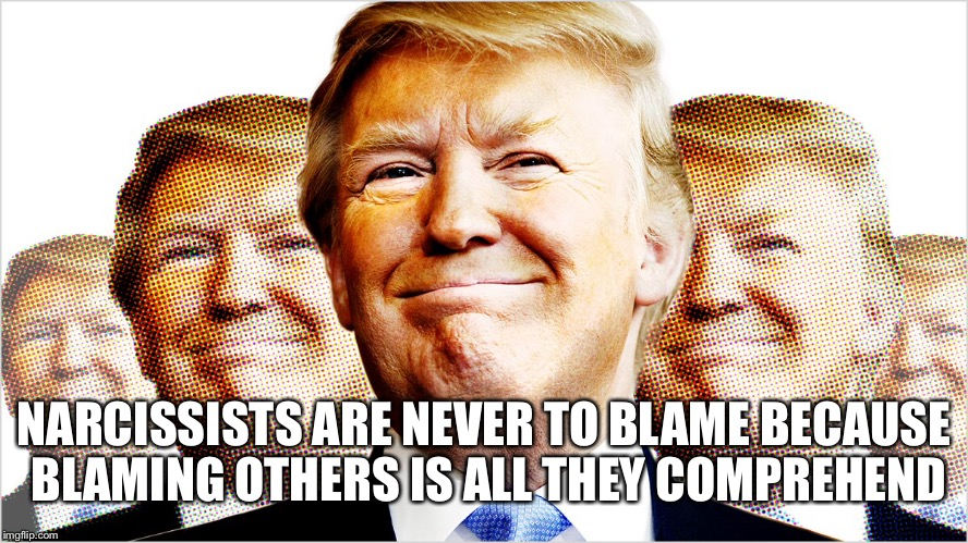 NARCISSISTS ARE NEVER TO BLAME BECAUSE BLAMING OTHERS IS ALL THEY COMPREHEND | made w/ Imgflip meme maker