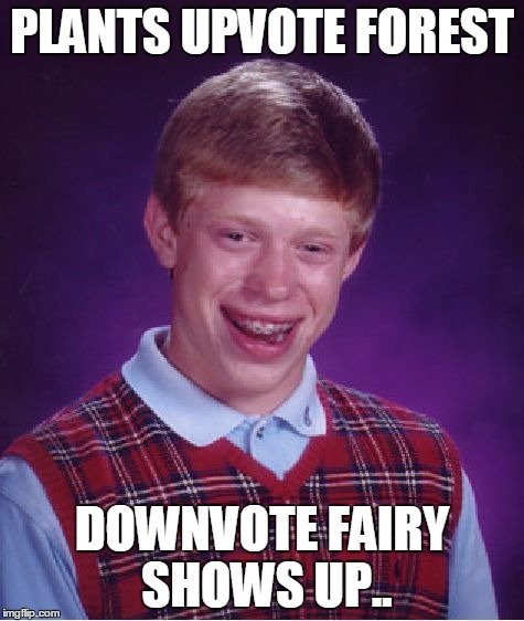 Bad Luck Brian Meme | PLANTS UPVOTE FOREST DOWNVOTE FAIRY SHOWS UP.. | image tagged in memes,bad luck brian | made w/ Imgflip meme maker