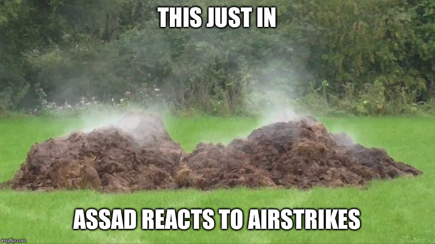 THIS JUST IN; ASSAD REACTS TO AIRSTRIKES | image tagged in pos,syria,assad,donald trump,usa | made w/ Imgflip meme maker