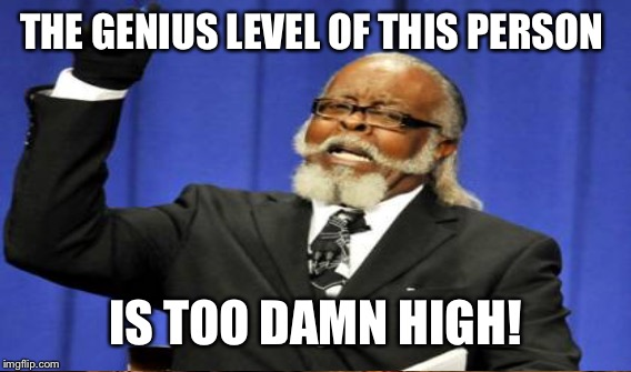 THE GENIUS LEVEL OF THIS PERSON IS TOO DAMN HIGH! | made w/ Imgflip meme maker