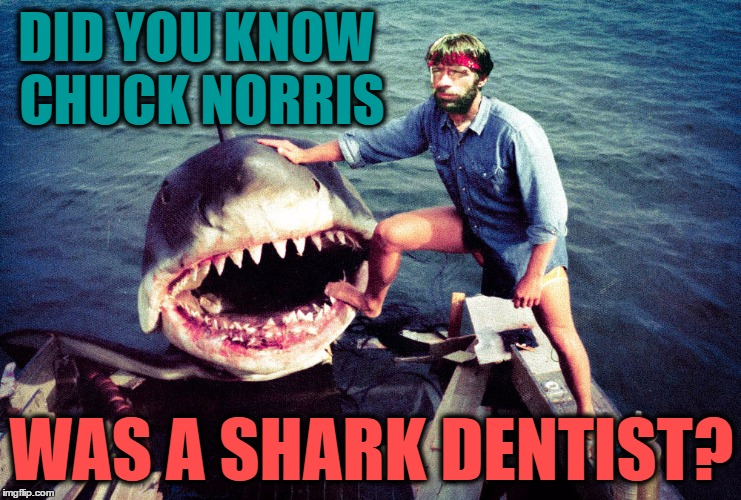 Chuck Norris Swims with Sharks | DID YOU KNOW CHUCK NORRIS WAS A SHARK DENTIST? | image tagged in chuck norris,animals,sharks,memes,chuck norris week,funny | made w/ Imgflip meme maker