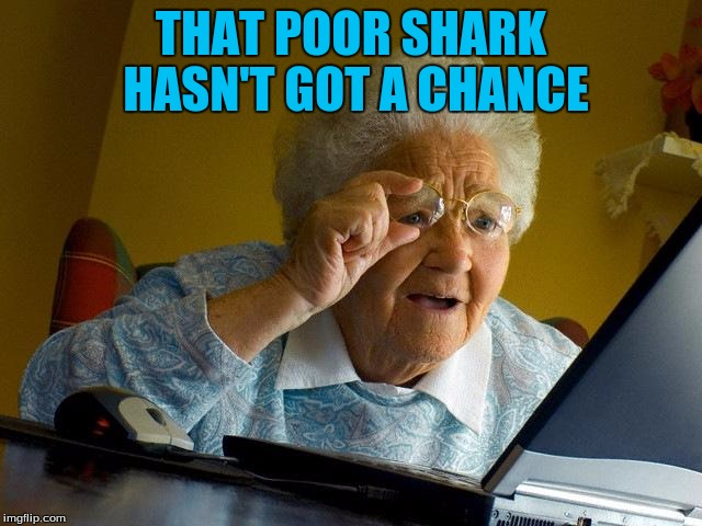 Grandma Finds The Internet Meme | THAT POOR SHARK HASN'T GOT A CHANCE | image tagged in memes,grandma finds the internet | made w/ Imgflip meme maker
