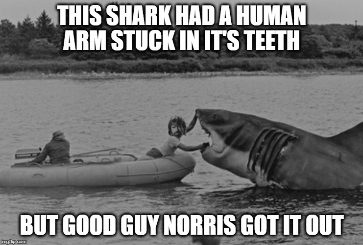 THIS SHARK HAD A HUMAN ARM STUCK IN IT'S TEETH BUT GOOD GUY NORRIS GOT IT OUT | made w/ Imgflip meme maker