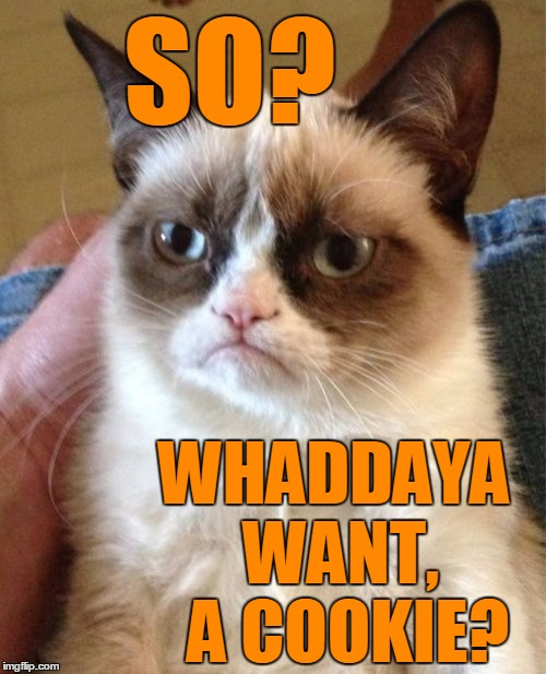 Grumpy Cat Meme | SO? WHADDAYA WANT,  A COOKIE? | image tagged in memes,grumpy cat | made w/ Imgflip meme maker