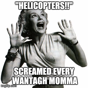 """HELICOPTERS!!"" SCREAMED EVERY WANTAGH MOMMA 