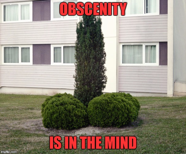 OBSCENITY IS IN THE MIND | made w/ Imgflip meme maker