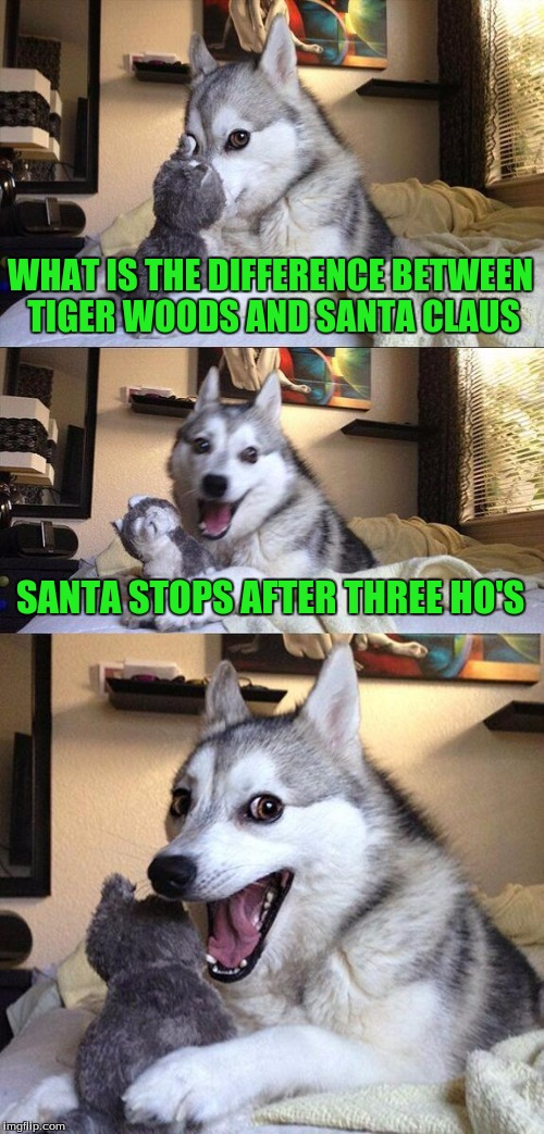 Bad Pun Dog Meme | WHAT IS THE DIFFERENCE BETWEEN TIGER WOODS AND SANTA CLAUS SANTA STOPS AFTER THREE HO'S | image tagged in memes,bad pun dog | made w/ Imgflip meme maker