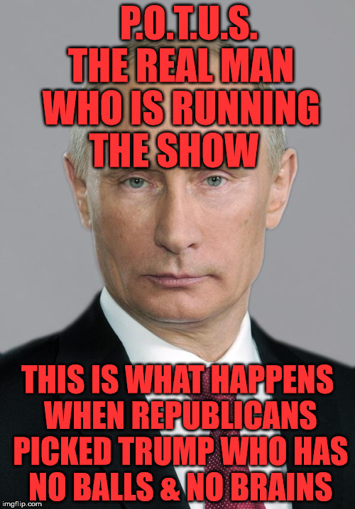 putin | P.O.T.U.S. THE REAL MAN WHO IS RUNNING THE SHOW THIS IS WHAT HAPPENS WHEN REPUBLICANS PICKED TRUMP WHO HAS NO BALLS & NO BRAINS | image tagged in putin | made w/ Imgflip meme maker