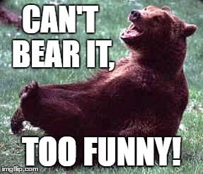 Laughing bear | CAN'T BEAR IT, TOO FUNNY! | image tagged in laughing bear | made w/ Imgflip meme maker