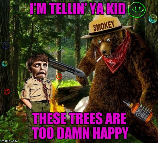 Bob Ross Wuz Here... Bob Ross Week ... A Lafonso Event | I'M TELLIN' YA KID THESE TREES ARE TOO DAMN HAPPY | image tagged in smokey the bear drunk,memes,bob ross week,bob ross,smokey the bear says,funny | made w/ Imgflip meme maker