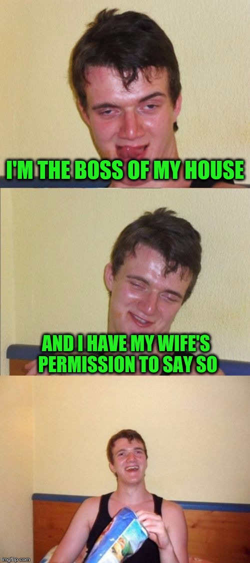 10 guy bad pun | I'M THE BOSS OF MY HOUSE AND I HAVE MY WIFE'S PERMISSION TO SAY SO | image tagged in 10 guy bad pun | made w/ Imgflip meme maker