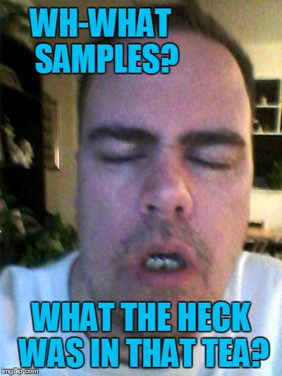 tired | WH-WHAT  SAMPLES? WHAT THE HECK WAS IN THAT TEA? | image tagged in tired | made w/ Imgflip meme maker