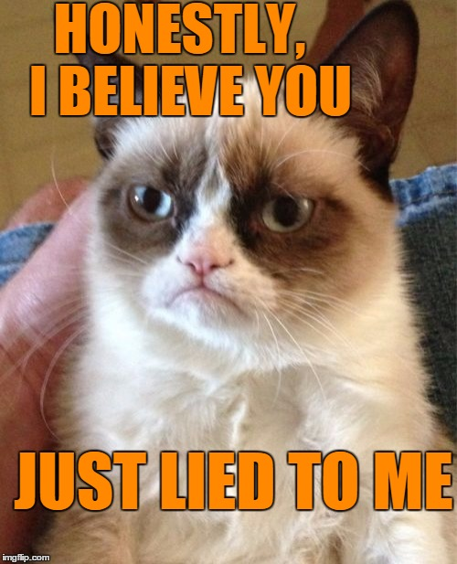 Grumpy Cat Meme | HONESTLY,  I BELIEVE YOU JUST LIED TO ME | image tagged in memes,grumpy cat | made w/ Imgflip meme maker