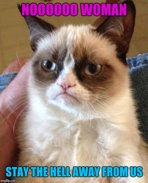 Grumpy Cat Meme | NOOOOOO WOMAN STAY THE HELL AWAY FROM US | image tagged in memes,grumpy cat | made w/ Imgflip meme maker