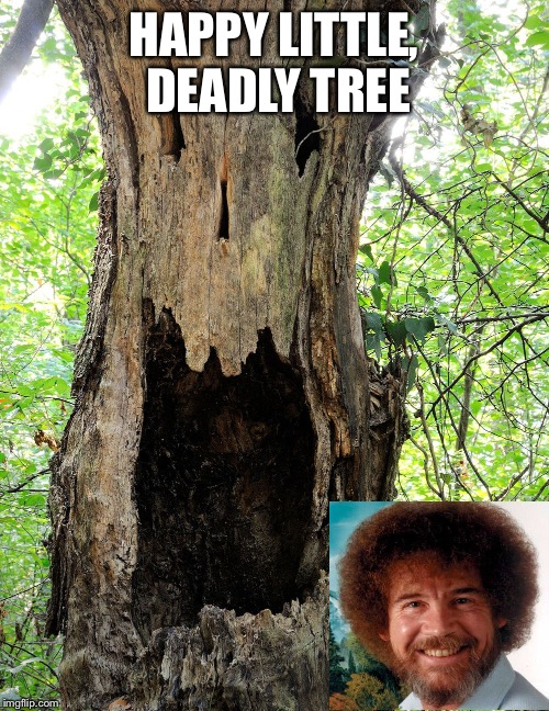 Bob Ross after looking at current events | HAPPY LITTLE, DEADLY TREE | image tagged in bob ross week | made w/ Imgflip meme maker