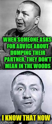 I really need to get this straight | I KNOW THAT NOW WHEN SOMEONE ASKS FOR ADVICE ABOUT DUMPING THEIR PARTNER, THEY DON'T MEAN IN THE WOODS | image tagged in curley | made w/ Imgflip meme maker