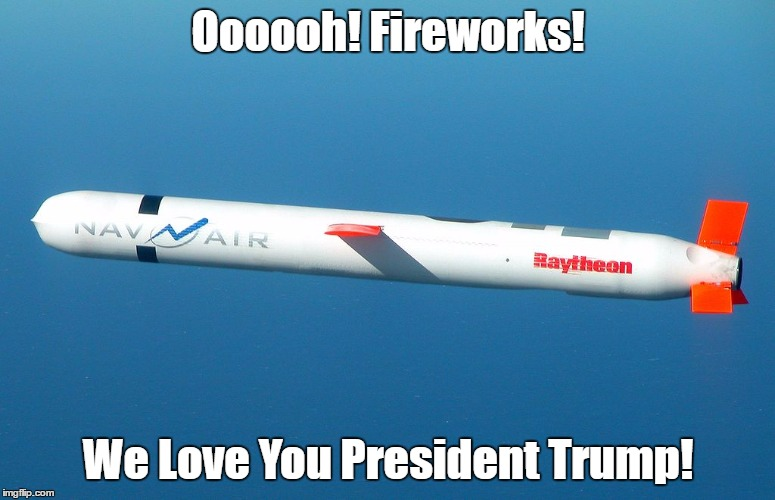 """Oooooh! Fireworks! We Love You President Trump!"" 