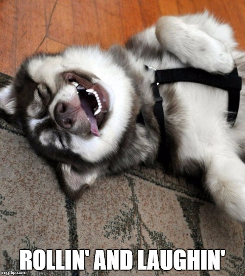 ROLLIN' AND LAUGHIN' | made w/ Imgflip meme maker