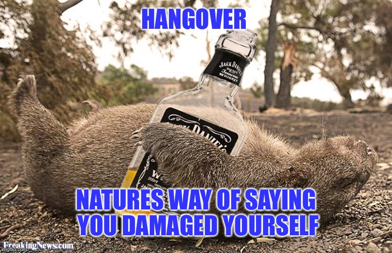 HANGOVER NATURES WAY OF SAYING YOU DAMAGED YOURSELF | made w/ Imgflip meme maker