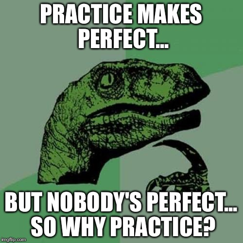 Philosoraptor Meme | PRACTICE MAKES PERFECT... BUT NOBODY'S PERFECT... SO WHY PRACTICE? | image tagged in memes,philosoraptor | made w/ Imgflip meme maker