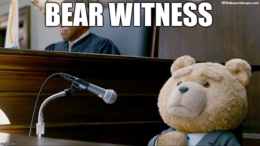 BEAR WITNESS | image tagged in memes,funny,bad pun,bad puns | made w/ Imgflip meme maker