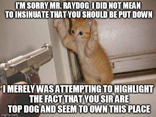 I'M SORRY MR. RAYDOG  I DID NOT MEAN TO INSINUATE THAT YOU SHOULD BE PUT DOWN I MERELY WAS ATTEMPTING TO HIGHLIGHT THE FACT THAT YOU SIR ARE | made w/ Imgflip meme maker