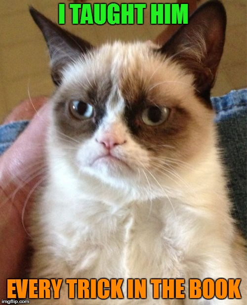 Grumpy Cat Meme | I TAUGHT HIM EVERY TRICK IN THE BOOK | image tagged in memes,grumpy cat | made w/ Imgflip meme maker
