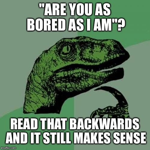 "Read the words backwards not the letters | ""ARE YOU AS BORED AS I AM""? READ THAT BACKWARDS AND IT STILL MAKES SENSE 