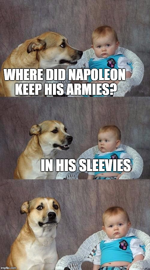 Dad Joke Dog Meme | WHERE DID NAPOLEON KEEP HIS ARMIES? IN HIS SLEEVIES | image tagged in memes,dad joke dog | made w/ Imgflip meme maker
