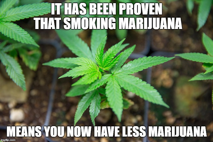 Marijuana | IT HAS BEEN PROVEN THAT SMOKING MARIJUANA MEANS YOU NOW HAVE LESS MARIJUANA | image tagged in marijuana plant,weed,smoke weed everyday,memes,dope,dank memes | made w/ Imgflip meme maker