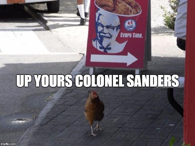 Up yours Colonel Sanders |  UP YOURS COLONEL SANDERS | image tagged in colonel sanders,funny chicken,up yours | made w/ Imgflip meme maker