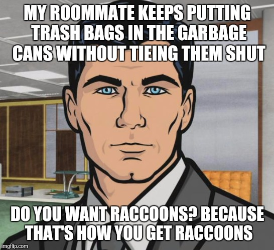 Archer Meme | MY ROOMMATE KEEPS PUTTING TRASH BAGS IN THE GARBAGE CANS WITHOUT TIEING THEM SHUT DO YOU WANT RACCOONS? BECAUSE THAT'S HOW YOU GET RACCOONS | image tagged in memes,archer | made w/ Imgflip meme maker