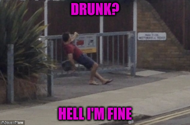 DRUNK? HELL I'M FINE | made w/ Imgflip meme maker