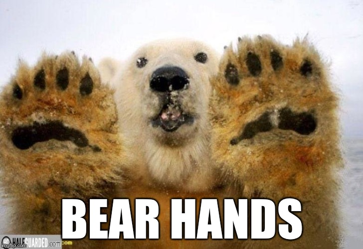 BEAR HANDS | made w/ Imgflip meme maker