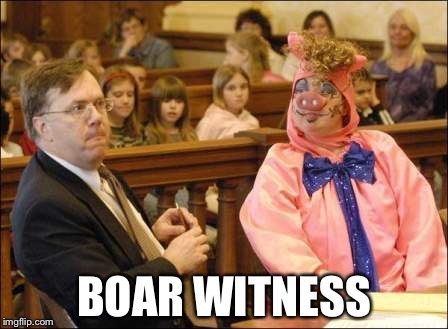 BOAR WITNESS | made w/ Imgflip meme maker
