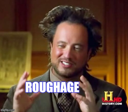 Ancient Aliens Meme | ROUGHAGE | image tagged in memes,ancient aliens | made w/ Imgflip meme maker