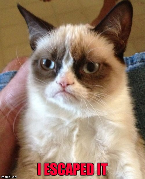 Grumpy Cat Meme | I ESCAPED IT | image tagged in memes,grumpy cat | made w/ Imgflip meme maker